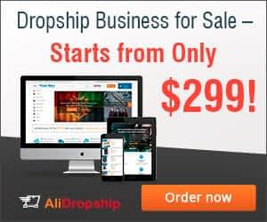 Get a Money Making Dropshipping Store Built for You! 5