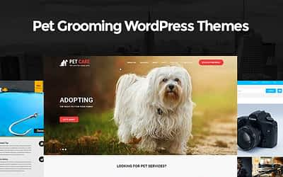 Pet Grooming WordPress Themes for Pet Salons and Vet Care Websites