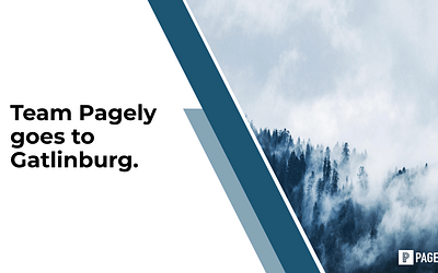 Building the Future of Pagely: Our Vision for 2020