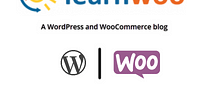 LearnWoo Title Logo How to Hide Page Title in WordPress