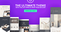 Divi Theme Explore the World of WordPress
