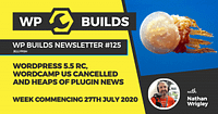 WP Builds News Episode 125 300x158 1 Nothing found