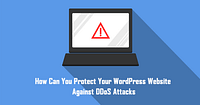 protect wordpress website What Are WordPress Plugins and What Do They Do