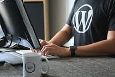 Finding Someone to Make Your New WordPress Website? Here's How You Can Screen the Candidates