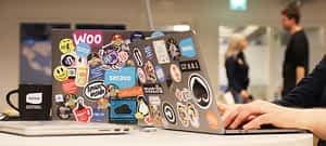 Webinars for WordPress Developers