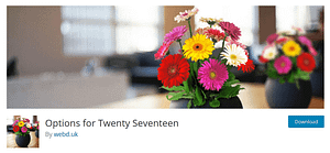 How To Big Up Your Theme With Options for Twenty Seventeen