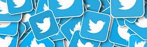 Twitter Widget: What Is It And How To Use It?