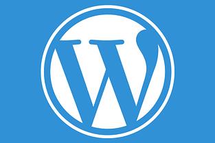 Tips for WordPress Plugin and Theme Development