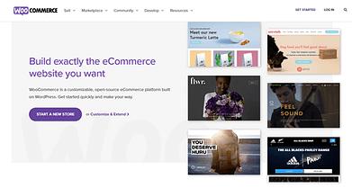 5 Best eCommerce Plugins for WordPress