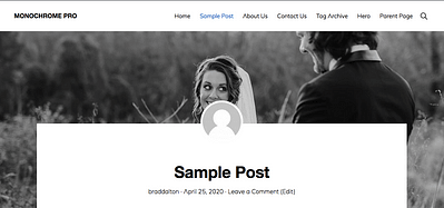 Show Hide Featured Image After Header On Single Posts in Monochrome Pro