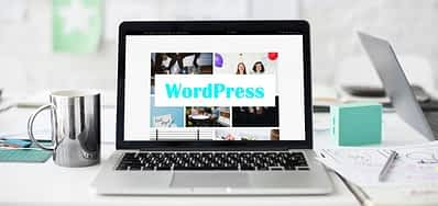 Top 9 Reasons Why WordPress Websites Are the Best for Small Businesses