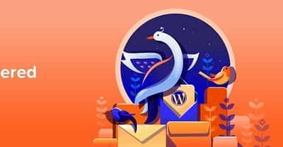 5 (+1) Best WordPress Newsletter Plugins for Easy Email Marketing