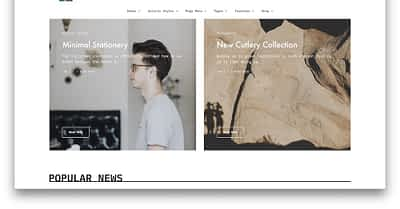 12 Best Content Curation WordPress Themes 2020