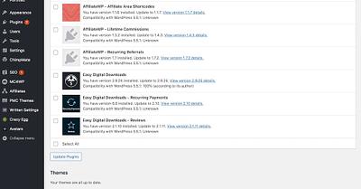 Update WordPress Theme Without Losing Customization [Guide]